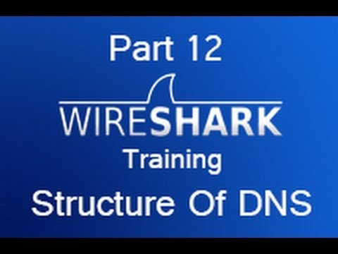 Wireshark Training - Part 12 The Structure Of DNS