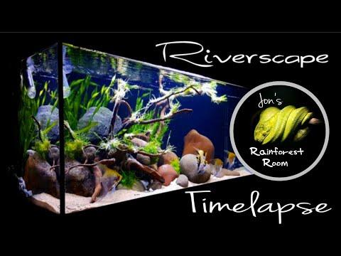 Aquascape Timelapse - My Riverscape