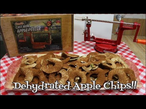 Dehydrated Cinnamon Apple Chips ~ Purelite Apple Peeler~ Product Share ~ Noreen