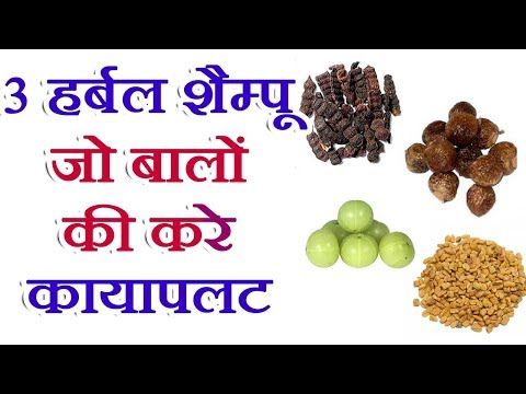 Best Herbal Shampoo Homemade In Hindi For Hair Growth Hair Care Tips In Hindi