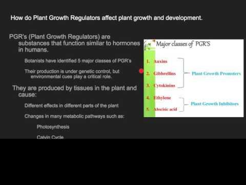 11.4 Factors that affect plant growth