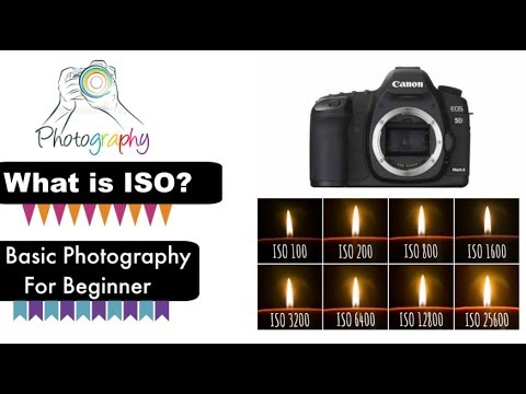 What is ISO? Basic Photography For Beginner - Bangla Tutorial