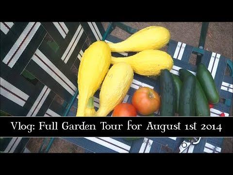 Full Garden Tour for August 1st 2014