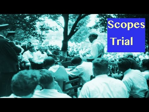 Scopes Monkey Trial (Story Time with Mr. Beat)