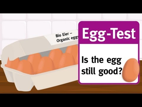 Egg test: How to test if an egg is still good!