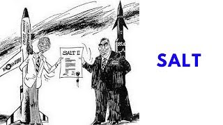 History Brief: SALT