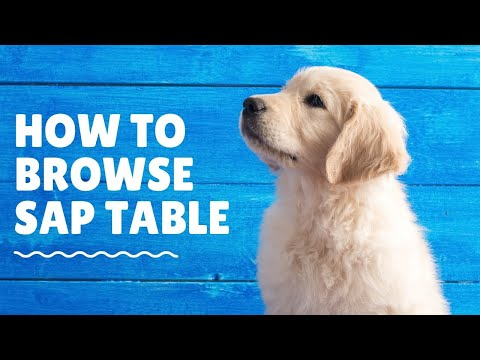 SAP Training How to browse SAP Tables for SAP Auditing