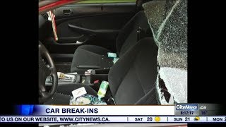 Video: Rash of vehicle break-ins have residents in Mississauga neighbourhood on edge