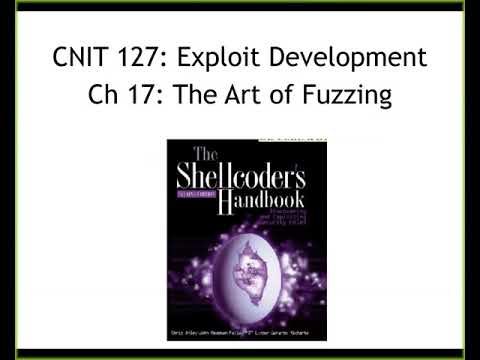 CNIT 127 - Ch 16-17: Fault Injection and Fuzzing