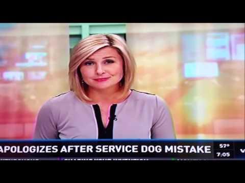 Bakery Apologizes For Service Dog Mistake - WKYC