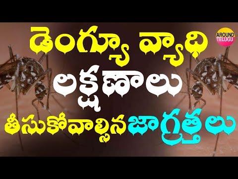 డెంగ్యూ వ్యాధి లక్షణాలు...తీసుకోవాల్సిన జాగ్రత్తలు -  Signs and Symptoms of Dengue Fever In Telugu