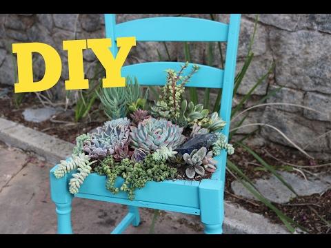 Succulent Chair | Succulent Planter DIY | DIY with Caitlin