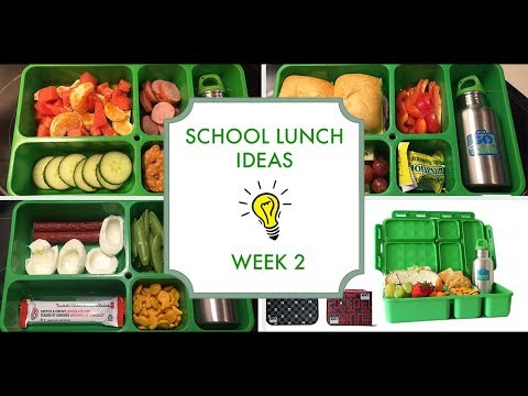 School Lunch Ideas: Week 2 & Go Green Lunch Box Mini Review