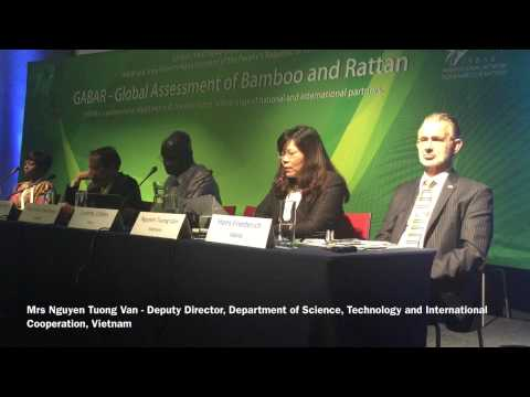 Launch of the Global Assessment of Bamboo and Rattan (GABAR)