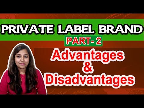 Advantages of Private label brand for Ecommerce Sellers | Pros and Cons own brand product | Part 2