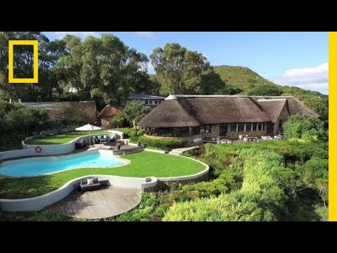 Stay in Luxury Amongst South Africa's Unique Floral Kingdom | National Geographic