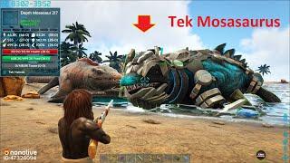 ARK: Crystal Isles #12 - Mình Chế Tạo Đạn Ngủ Xịn, Đi Bắt Thú Sướng Luôn   Taming Cả Mosasaurus 😍