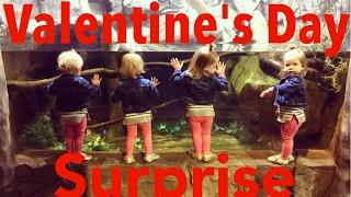 WE SURPRISED THE DURLS ON VALENTINE