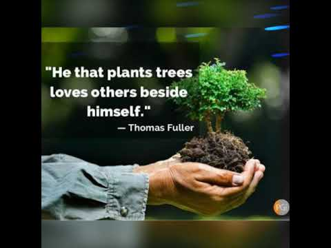 🌎World environment day sayings, quotes, wishes 🌎 ¦¦ Save our mother earth 🙏