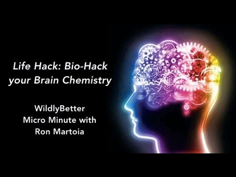 Bio-Hack Your Brain Chemistry