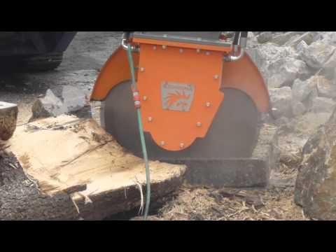 Echidna rocksaw cutting steel reinforced concrete