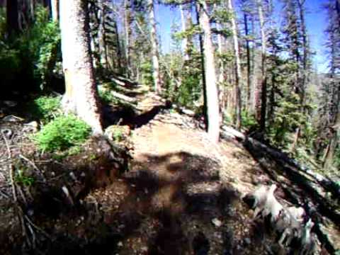 Virgin River Rim Trail descent from Navajo Peak