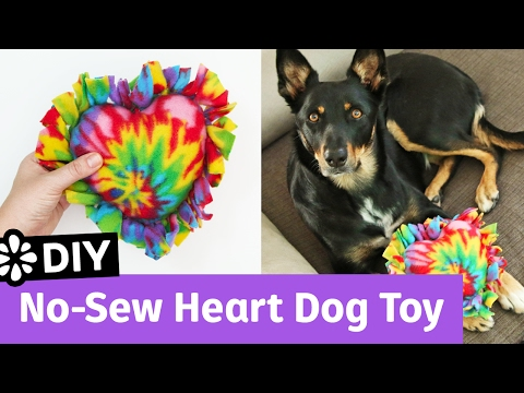 DIY No-Sew Heart Dog Toy | It's All Love Collab | Sea Lemon