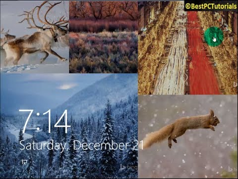 Windows 8.1 - Bing Wallpapers Lockscreen Slideshow (New Image Each Day)