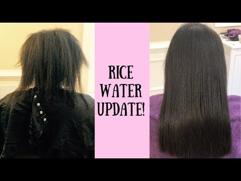 Rice Water Update -Things You Should Know