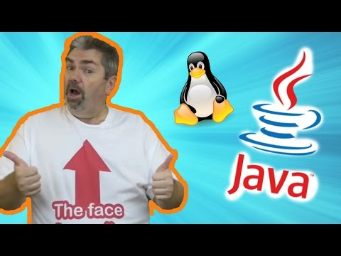 Java Development Kit: How To Install And Setup the JDK For A Linux Machine