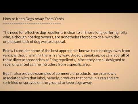 How To Keep Dogs Away 2vd