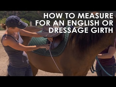 How To Measure Your Horse For English Dressage Girth Size