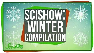 SciShow: Winter Compilation