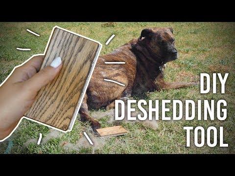 How to Make Dog Deshedding Brush - DIY