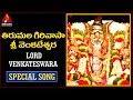 Lord Balaji | Tirumala Girivasa Sri Venkateswara Telugu Devotional Song | Amulya Audios And Videos
