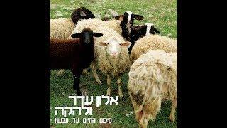 #x202b;אלון עדר ולהקה - פרה זה פרה זה פרה#x202c;lrm;
