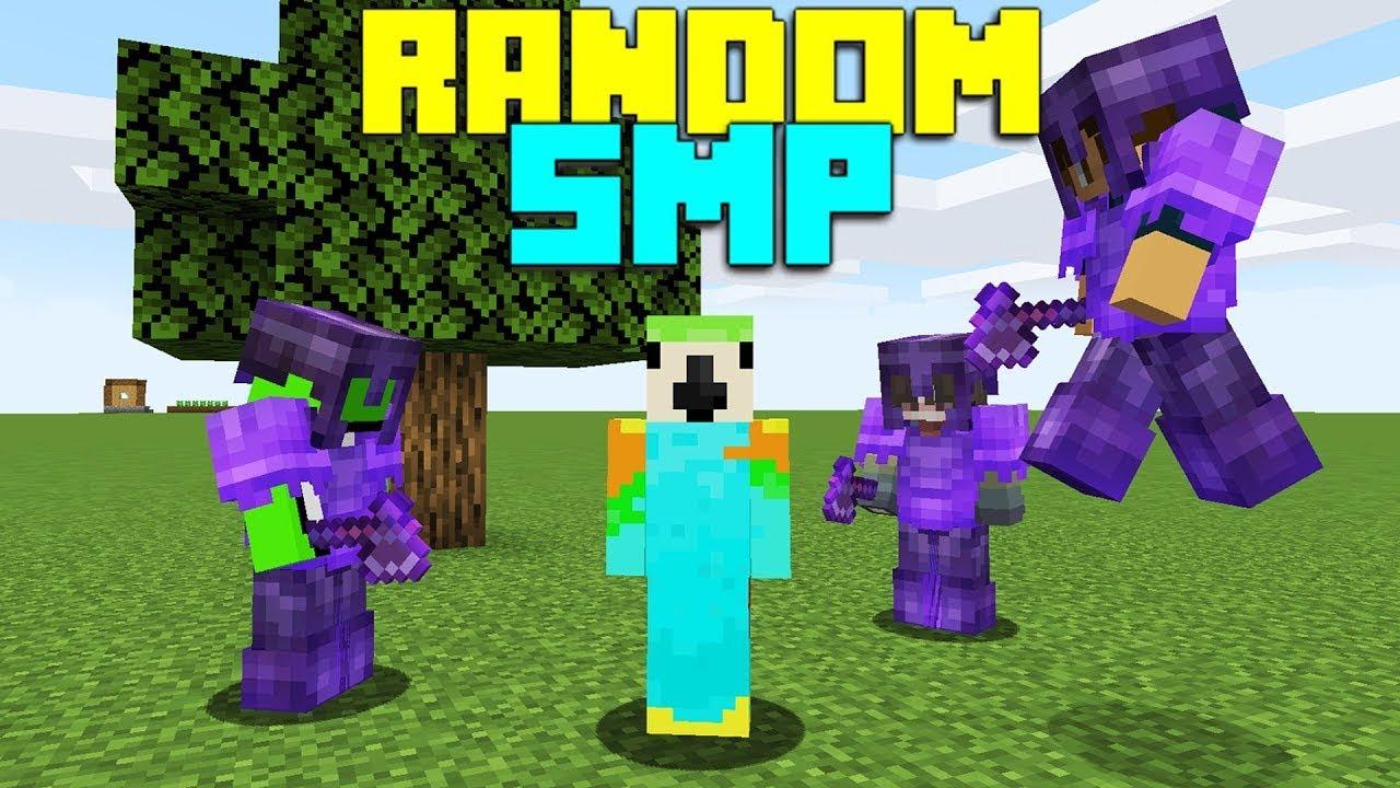 So I Joined a RANDOM Minecraft SMP...