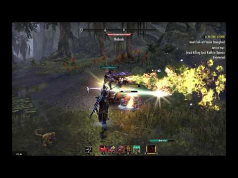 The Elder Scrolls Online : cheater using bots