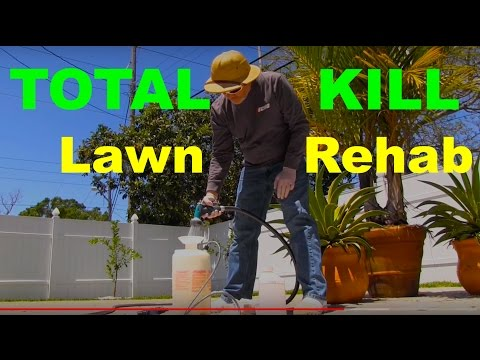 How To Kill A Lawn With Glyphosate or