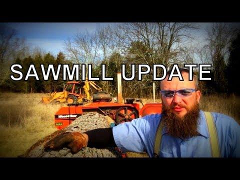 MYSTERY TREE REVEALED! SAWMILL UPDATE,