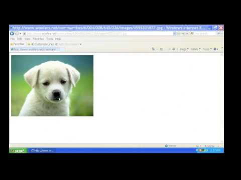Saving Picture from Google Images to FlashDrive