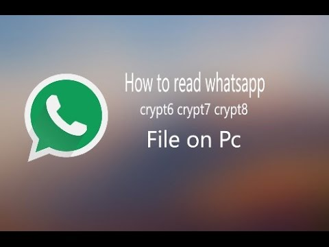 how to read whatsapp database file on pc