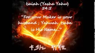 The Real Reason Why Yahusha Came Videos & Books