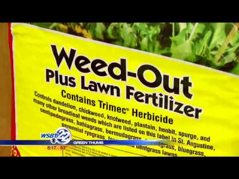 GREEN THUMBS: Weed free zone