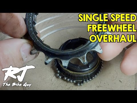 Single Speed Freewheel Overhaul - Disassembly/Assembly
