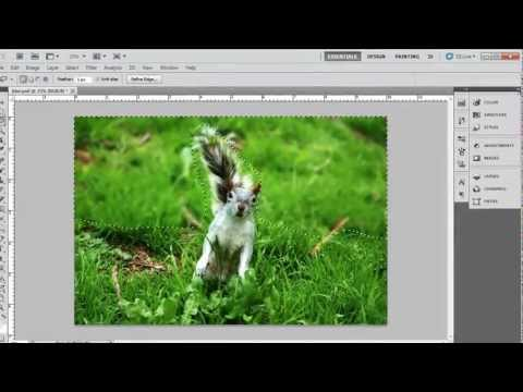 How to Blur Background in Photoshop CS5
