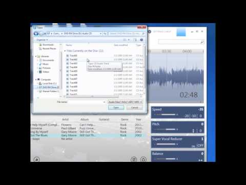 Riffmasterpro multi loop play+export still got the blues