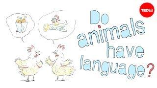 Do animals have language? - Michele Bishop