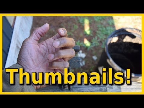 How to Make Fishing Video Thumbnails