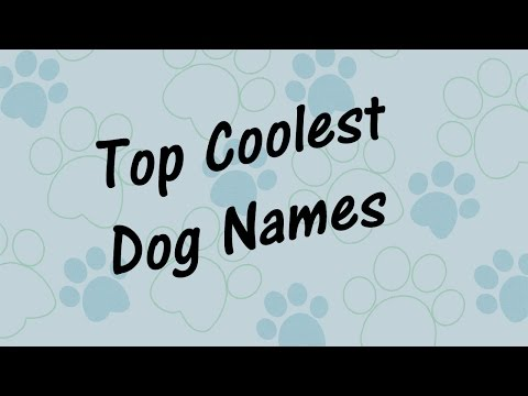🐶 Top COOLEST DOG NAMES!  Best PUPPY Names for Yout Pet 🐶